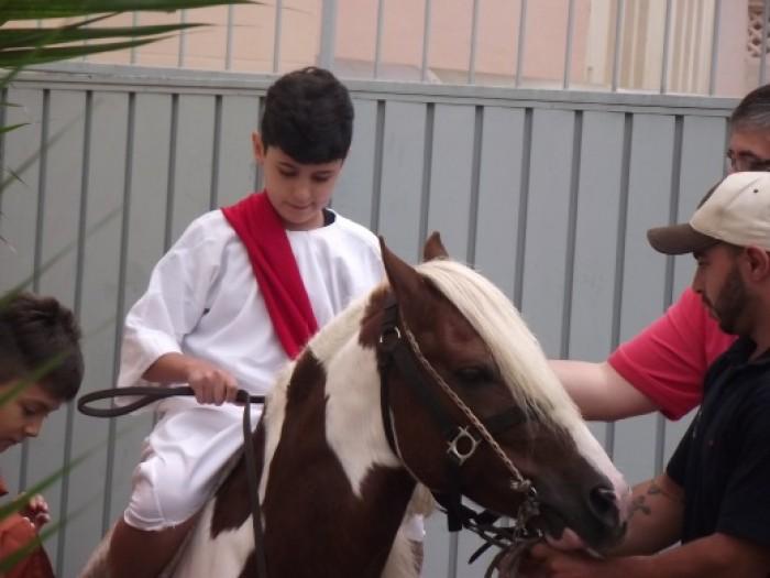 Missa De Domingo De Ramos 2017 9h